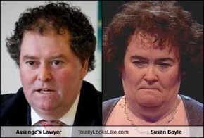 Assange's Lawyer Totally Looks Like Susan Boyle