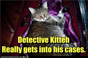 Detective Kitteh  Really gets into his cases.