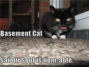 Basement Cat saiz ur soul is nom-able.