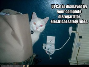 Underwriter's Laboratory Cat