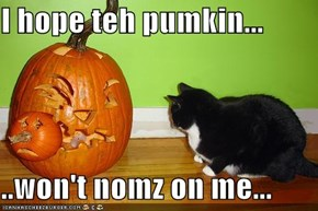 I hope teh pumkin...  ..won't nomz on me...