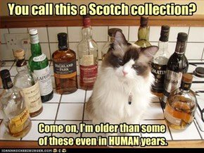 You call this a Scotch collection? Come on, I'm older than some of these even in HUMAN years.