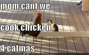 mom cant we cook chicken 4 catmas