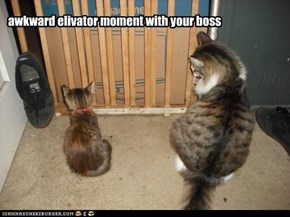 awkward elivator moment with your boss