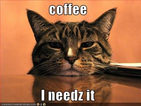 coffee  I needz it