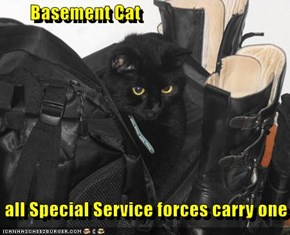 Basement Cat   all Special Service forces carry one