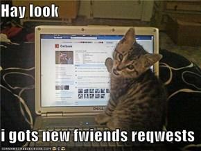 Hay look  i gots new fwiends reqwests
