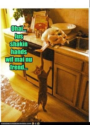 Ohai...  Jus shakin hands  wif mai nu frend...