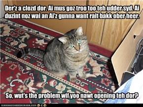 Wut a kitteh tinks wen yoo duzint moov kwicklee enuff.
