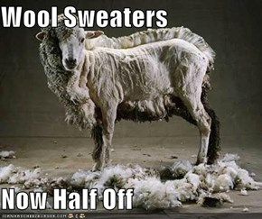 Wool Sweaters  Now Half Off