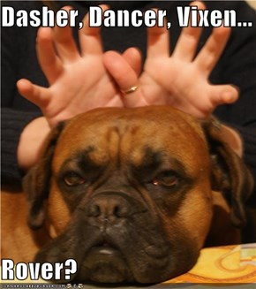 Dasher, Dancer, Vixen...  Rover?
