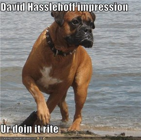 David Hasslehoff impression   Ur doin it rite