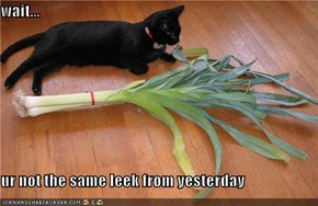 wait...  ur not the same leek from yesterday