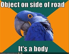 Paranoid Parrot: Objects in Mirror