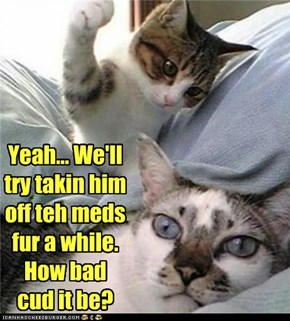 Yeah... We'll try takin him off teh meds fur a while.  How bad cud it be?