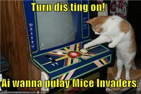 Turn dis ting on!     Ai wanna pulay Mice Invaders.
