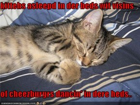 kittehs asleepd in der beds wit visins   of cheezburgrs dancin' in dere heds..