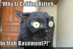 """Why Iz Ceiling Kitteh  In Mah Basement?!"""