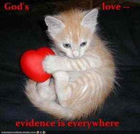 God's                                love --  evidence is everywhere