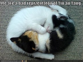 We are a bad reprzentaton of Yin an Yang