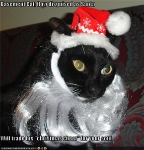 "Basement Cat; Now disguised as Santa  Will trade his ""christmas cheer"" for your soul"