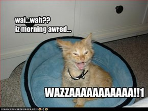 wai...wah??  iz morning awred...