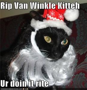 Rip Van Winkle Kitteh  Ur doin it rite