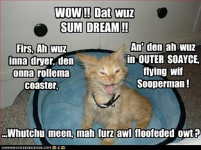 WOW !!  Dat  wuz  SUM  DREAM !!