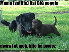 Mama (sniffle) Dat BIG goggie   gwowl at meh, bite he pweez