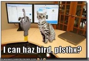 I can haz bird, plsthx?