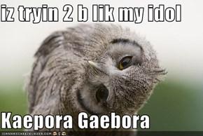 iz tryin 2 b lik my idol   Kaepora Gaebora
