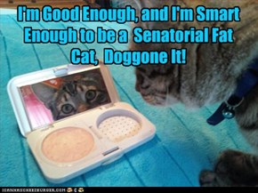 I'm Good Enough, and I'm Smart Enough to be a  Senatorial Fat Cat,  Doggone It!