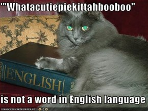 "'""Whatacutiepiekittahbooboo""  is not a word in English language"