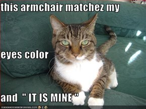 "this armchair matchez my  eyes color and  "" IT IS MINE """