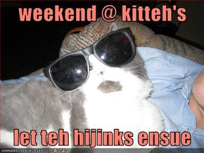 weekend @ kitteh's     let teh hijinks ensue
