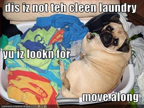 dis iz not teh cleen laundry  yu iz lookn for move along