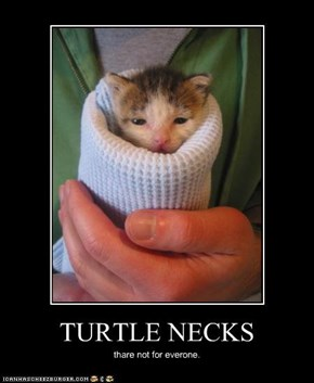 TURTLE NECKS