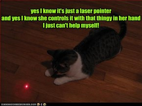 yes I know it's just a laser pointer and yes I know she controls it with that thingy in her hand I just can't help myself!
