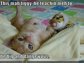 This mah tiggy, he teachin meh to   be big and dangewous.