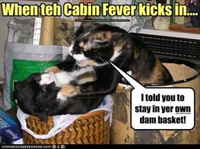 When teh Cabin Fever kicks in....