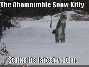 The Abomnimble Snow Kitty  Stalks its latest victim.