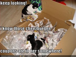 keep looking! i know those cheezburger  coupons are in her somewhere!