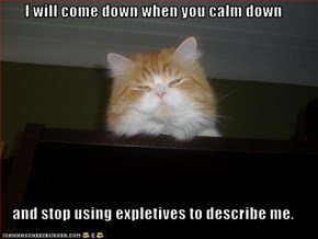 I will come down when you calm down  and stop using expletives to describe me.