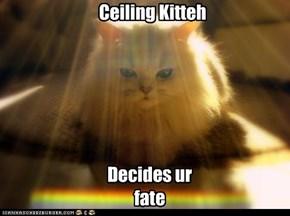 Ceiling Kitteh