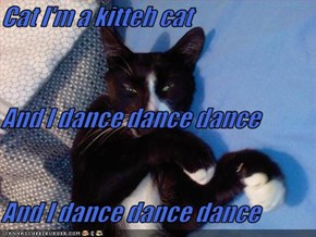 Cat I'm a kitteh cat And I dance dance dance And I dance dance dance