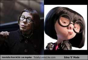 Henrietta from NCIS: Los Angeles Totally Looks Like Edna 'E' Mode