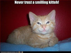 Never trust a smilling kitteh!