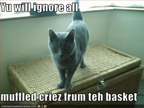 Yu will ignore all  muffled criez frum teh basket