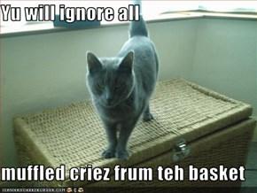 Yu will ignore all  muffled criez frum teh basket