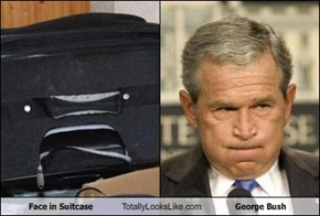 Face in Suitcase Totally Looks Like George Bush